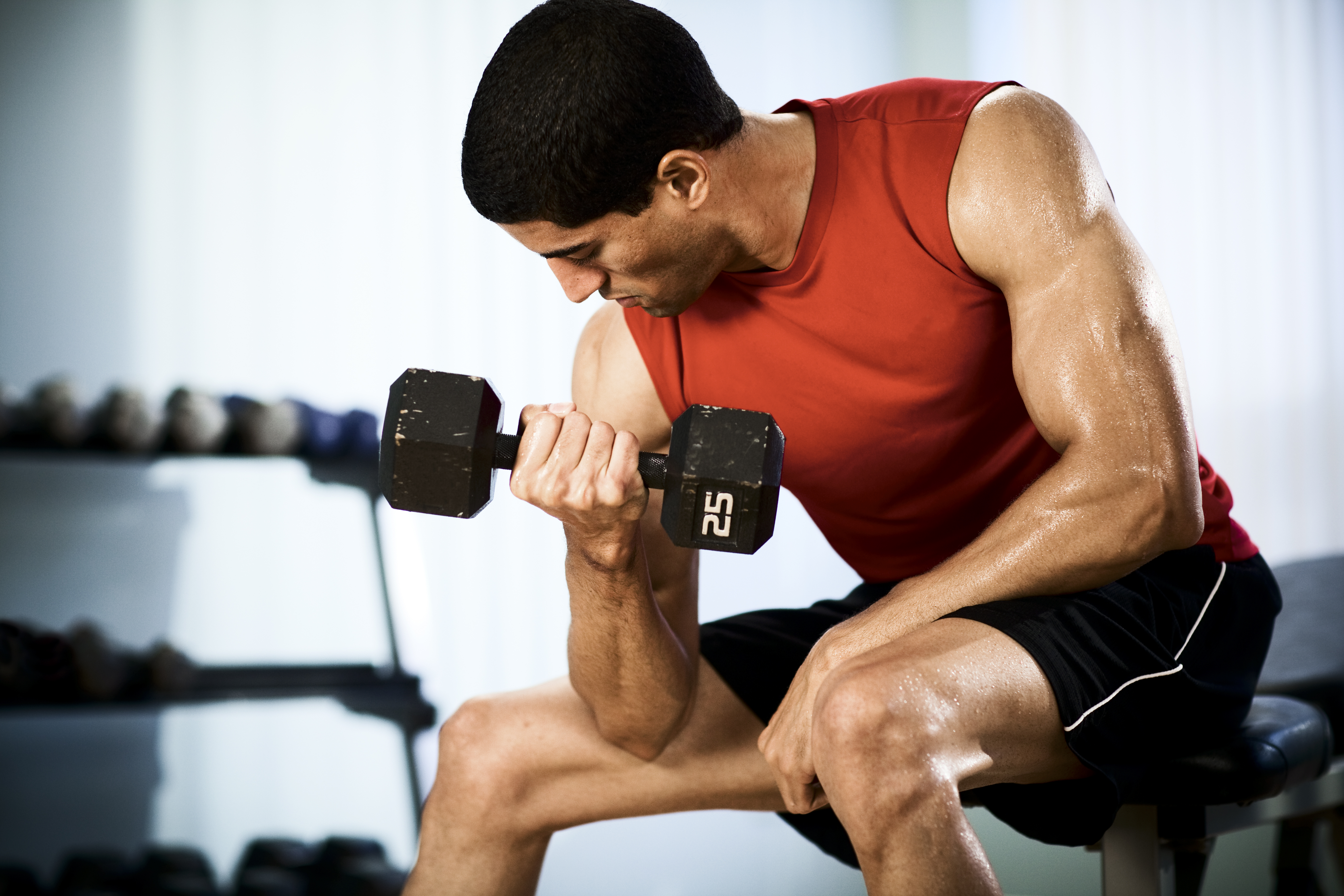 является весьма упражнения для накачки мышечной массы фото что вызывает